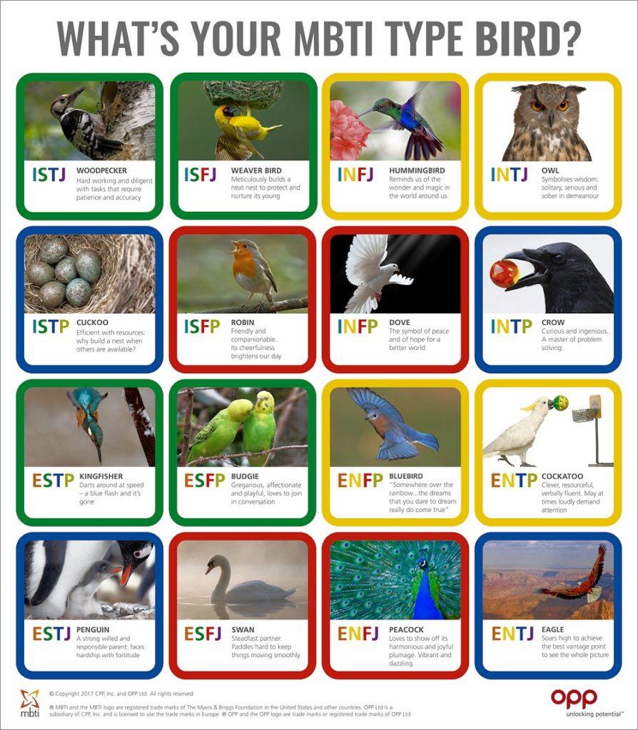 Bird Personality Types